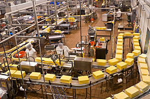 LinTech Food Processing Applications